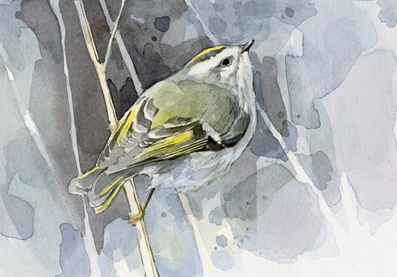 Bird Watercolor Painting - Golden-crowned Kinglet 5x7 Print