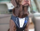 Best Man Dog Tuxedo Vest, Black, Steel Grey, or Hot Pink