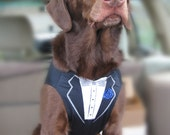 Best Man Dog Tuxedo Vest, Black or Steel Grey