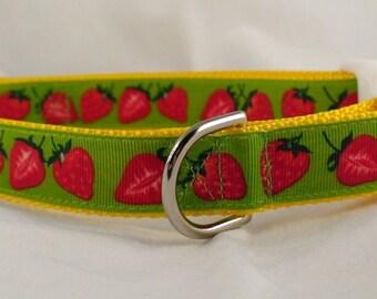 Strawberry Dog Collar / Summer Dog Collar