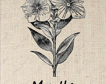 Digital Download for Iron on Transfer Myrtle Flower