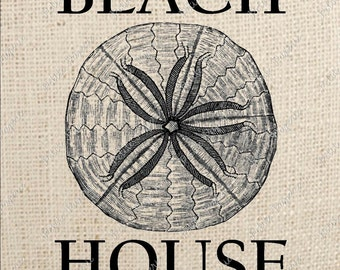 Sand Dollar Digital Download Iron on Transfer Beach House