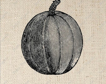 Pumpkin Digital Download or Iron on Transfer