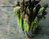 asparagus love print