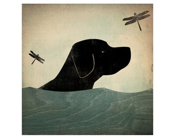 Summer Swim - Black (Red, Yellow, Brown too) Dog giclee print 7x7inch LABRADOR RETRIEVER