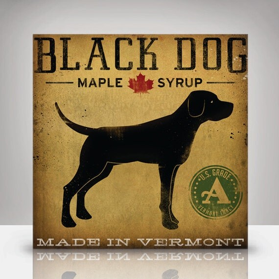 Black LABRADOR Dog Maple Syrup Illustration on Canvas Panel 12x12.1.5 signed Gallery Wrapped Ready to Hang WALL ART