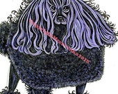 The Purple Poodle