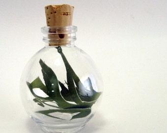 Seaweed Green Cut Paper Art Sculpture in a bottle -