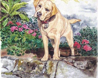 8  x 12  - Watercolor