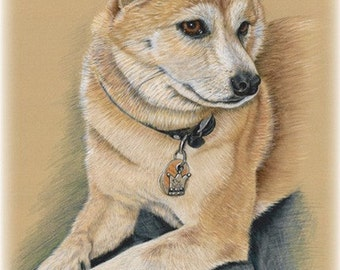 12 x 16 - Pastel and Colored Pencil