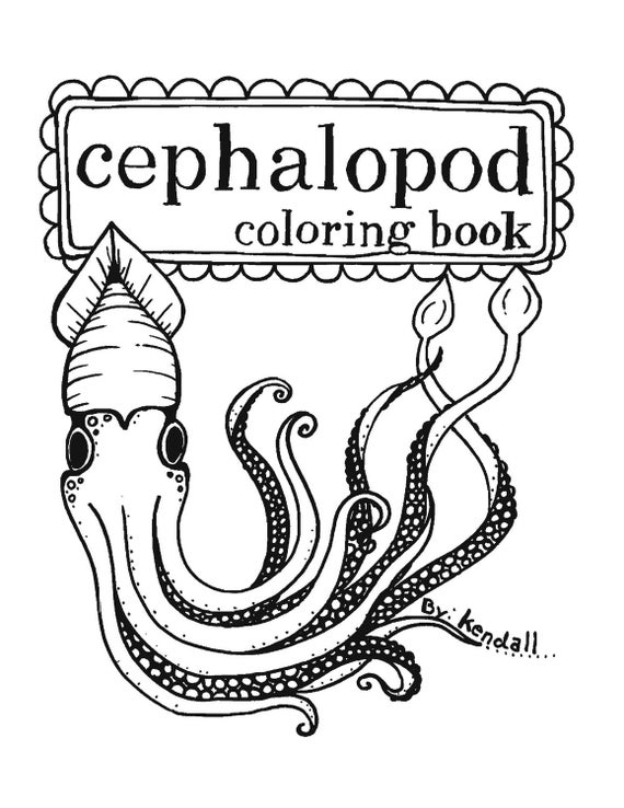 Items similar to cephalopods a coloring book of octopus for Cuttlefish coloring pages