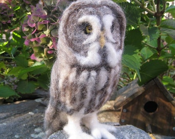 Mr. Great Grey Owl, needle felted bird fiber art