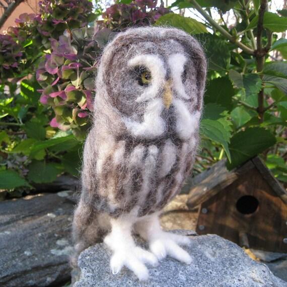 Mr. Great Grey Owl, needle felted bird fiber art