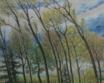 "Art Drawing Oil Pastel Landscape Forest Tree Bird Sky Audet Appalachian "" Heart Bent Spring Drouin rd, Compton, Quebec, Canada "" 22"" x 26 """
