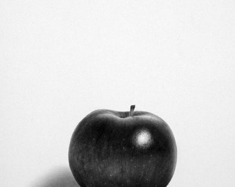 Still Life Apple Pencil Drawing Fine Art Signed Print