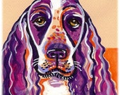 English Springer Spaniel --Artist Signed Watercolor Print