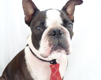 """Christmas Pet Tie / The """"Bubba Tie"""" for Happy Pets Red and Gold Silk / Ready to Ship"""