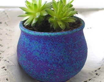 Mini Planter Handmade Ceramic Cactus Indoor Gardening Garden Terrarium Plant Pot Purple Blue Cup Bowl succulent planters modern home decor