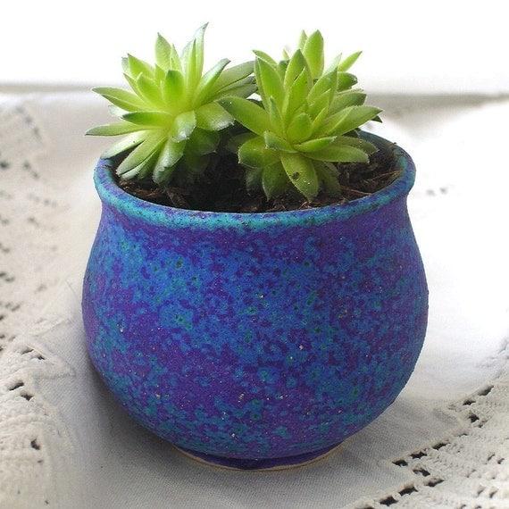 Mini Planter Handmade Ceramic Cactus Indoor Gardening Garden Terrarium Plant Pot Purple Blue Cup Bowl succulent planters modern home decor