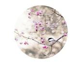 Modern, Pastel Nature photograph, pink mauve gray, chickadee, bird decor, woodland garden, 8x10 round print