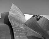 Disney Concert Hall, Los Angeles Print, Black and White, Modern, Architecture Photo, Abstract, Silver Wall Art