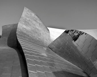 Modern Abstract Photography, Architecture Art, Disney Concert Hall, Los Angeles Photography, Black & White Office Decor