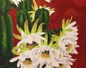 20% Off - Cactus Flower Painting, San Pedro Cactus, Original, Acrylic, 18 x 24, Southwest
