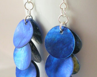 Short Electric Blue Large Shell Earrings on Silver Wires