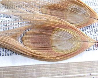 Peacock Earrings, Feather Earrings, DYED Cream Peacock Feather Earrings-White Chocolate Strawberry Earrings
