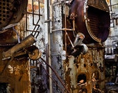 Industrial decay decor studio factory rust pipes steam rustic abandoned the past - The boiler room - fine art photograph