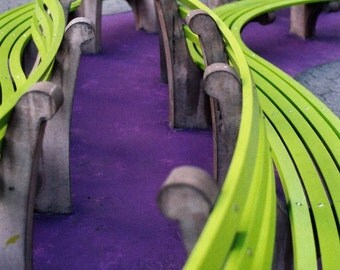 Park Bench, Purple and Green, Fine art photography, Pantone, 2017, greenery, purple photography, green photography, home decor photo