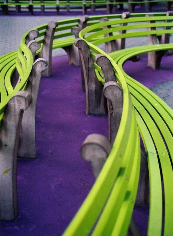 Park Bench, Purple and Green, Fine art photography, New york city photo, purple photography, green photography, home decor photo