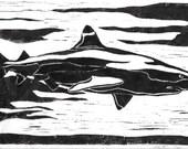 Black Tipped Reef Shark - Original Linocut Print