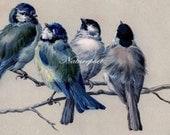 Pretty Birds Digital Art Image