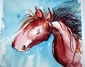 Watercolor wild pony horse study 7x7 original watercolour