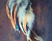 Coyote Feather Ear Cuff/ Natural Feather Ear Wrap/ Feather Earrings/ Festival Accessories/ Feather Hair Accessories/ Hair Jewelry/ Ear Wrap