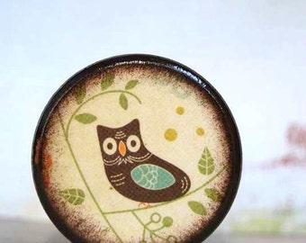 Blue Owl Splendor  Powder Box