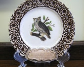 OMG, it's an OWL, Owl Plate from Wisconsin, Treasure Craft vintage made in USA, Trinket Dish, Tip Tray, Souvenir