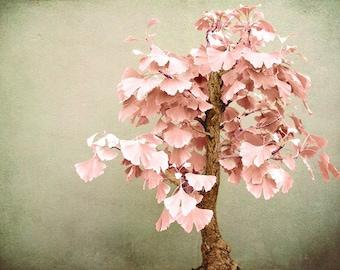 Fine Art Photograph - Gingkosai - Fine Art Print - Maple Tree - Soft Pastel Wall Art - Minimal Nature