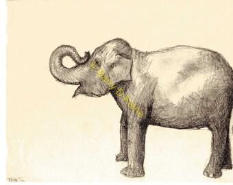 Baby Asian Elephant print