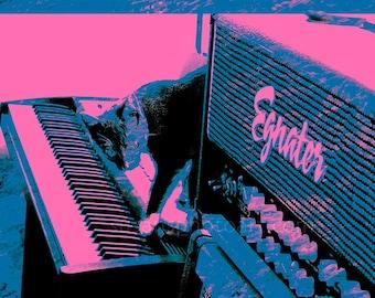 Piano Man Cat Pop Art, digital photo,  luster paper, wall art, office, kids room, small space art