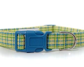 Henry,,,, Custom Dog Collar