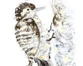 Woodpecker Print, Woodpecker Painting, Bird Watercolor, Woodland Nursery Decor, Bird Watercolor Painting, Bird Wall Art, Bird Nursery, sepia
