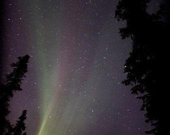 aurora lines, borealis photography, fine art print, northern lights landscape, night sky, green purple red lines