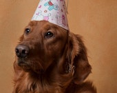 Dog Party Hat-Birthday-Children-Party Hat-Pink