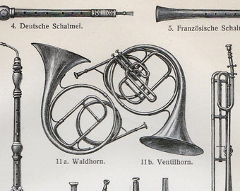 1900 Antique MUSICAL INSTRUMENTS print, wind instruments illustration