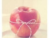 apple print, food photography, apple art, red kitchen print, white peppermint stripe, gift for teacher, fruit photograph, school decor