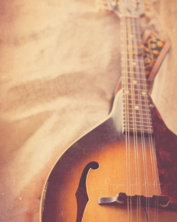 still life photography, mandolin photograph, string instrument bluegrass baroque classical music musician dreamy coffee toffee studio decor