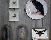 Raven - Handmade Decoupage Under Glass Plate