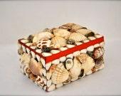 Vintage Jewelry Box - Beach Sea Shells Red Velvet